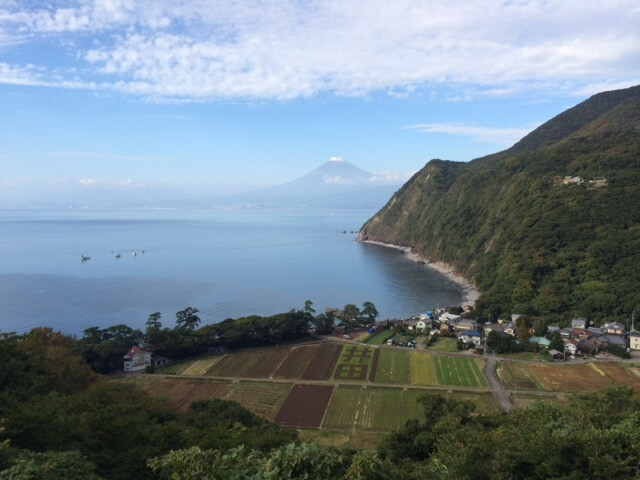 戸田の井田地区と富士山の画像