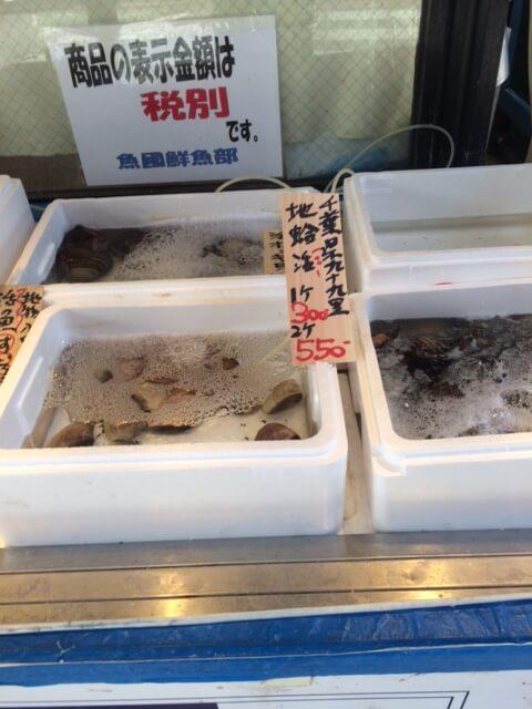 魚國で販売されている魚