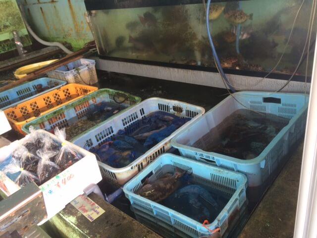 丸吉商店の活魚・貝類の画像