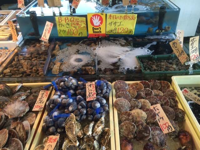 長井水産の貝類画像