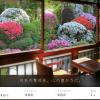 実際に『Relux』¥5,000円OFFクーポンコードとその使い方を解説します!