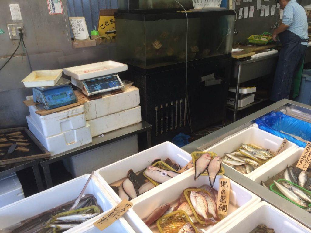 大磯 魚金の店内画像