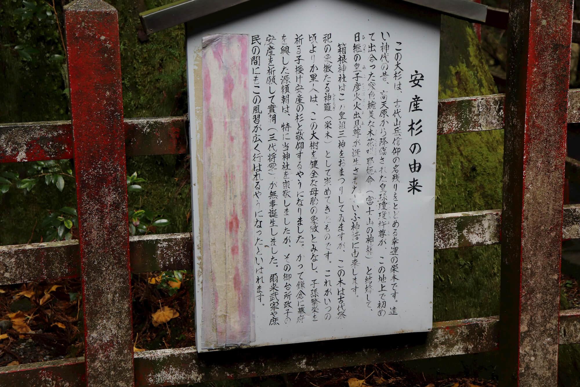 箱根神社の安産杉の由来