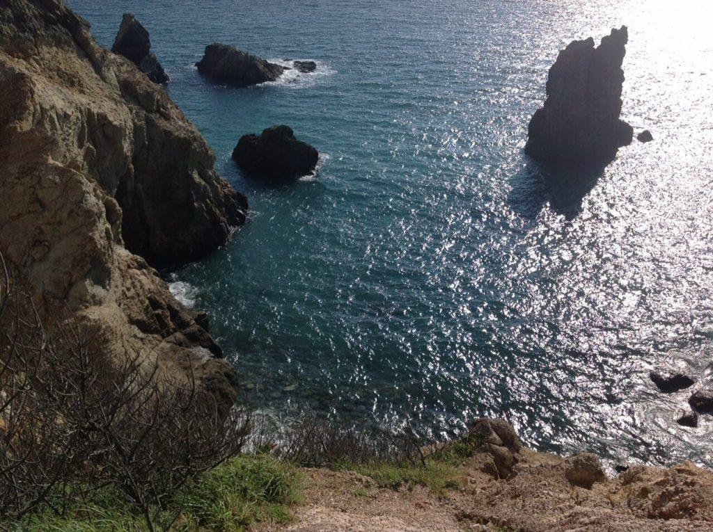黄金崎から見る駿河湾
