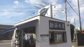 【実際に行ってみた】湘南で新鮮な「生しらす」の持ち帰りなら「勘兵水産」の直売所が良いよ