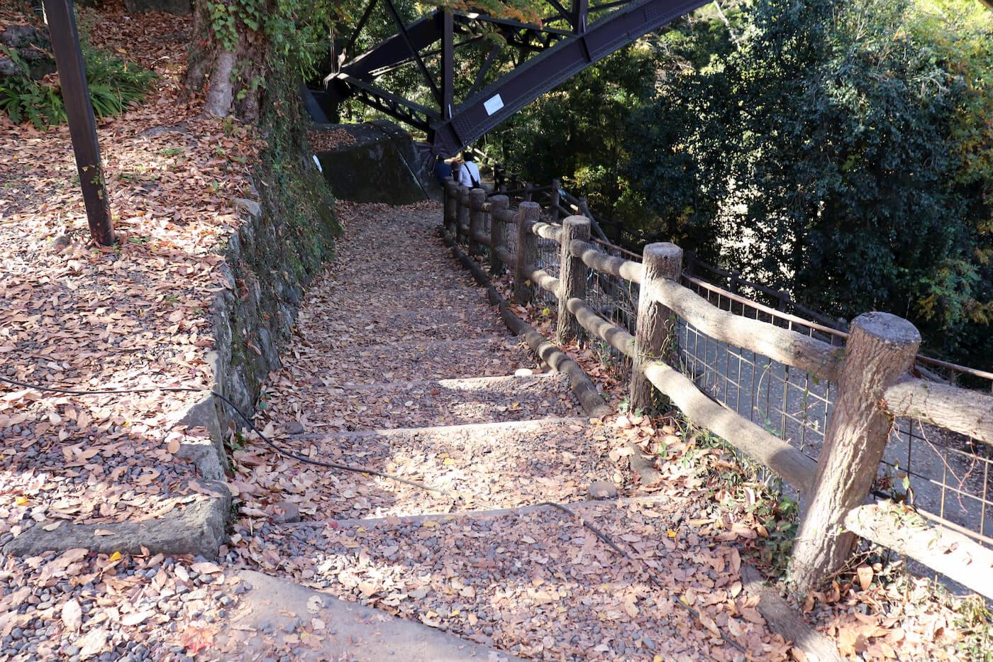 猿橋の遊歩道
