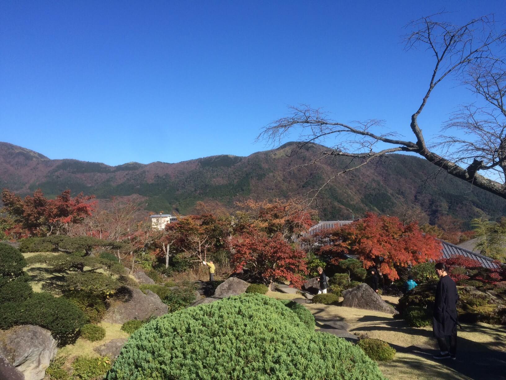 箱根美術館からの眺め