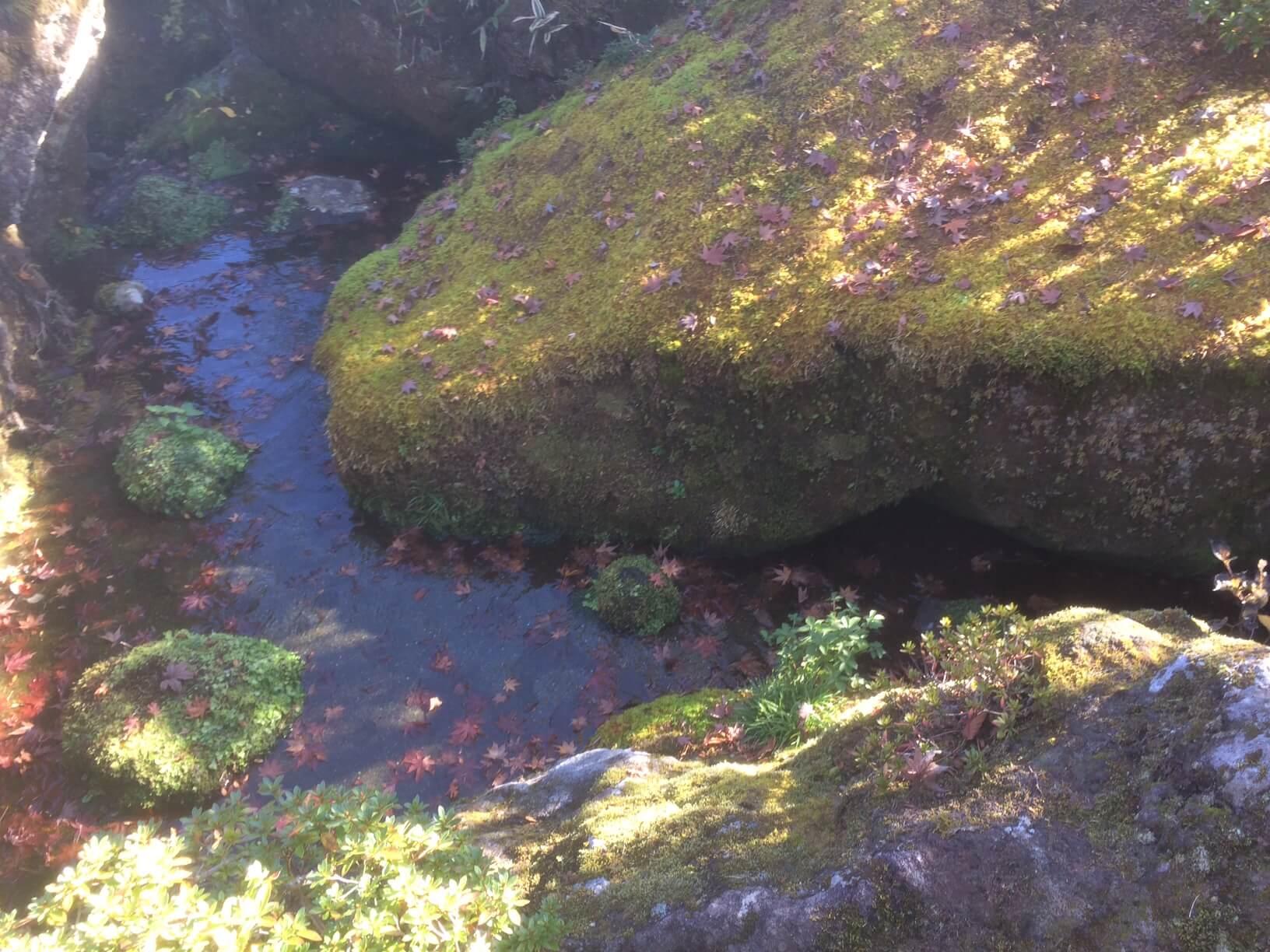 箱根美術館の小川