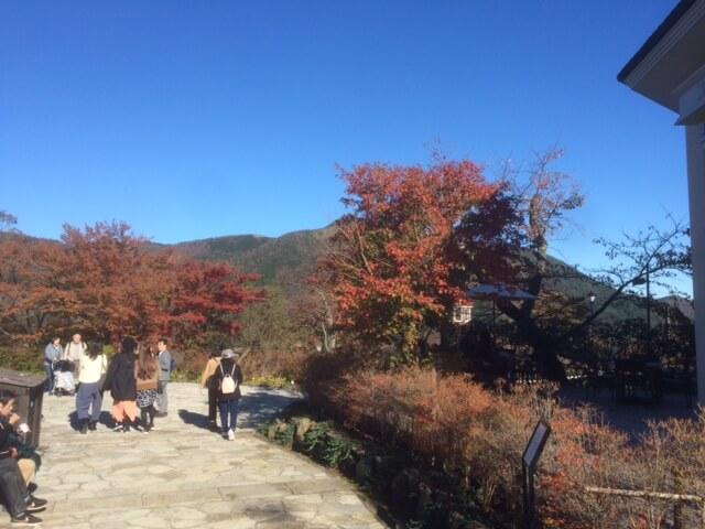 強羅公園からの眺め