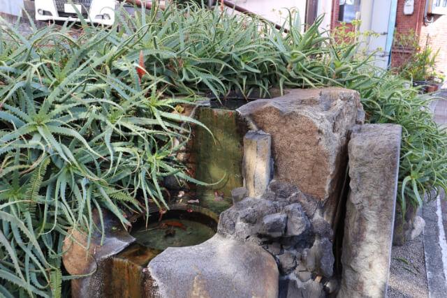熱海七湯風呂の湯