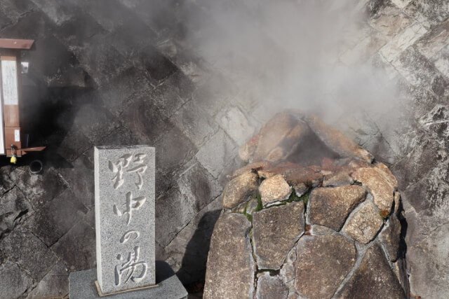 熱海七湯野中の湯