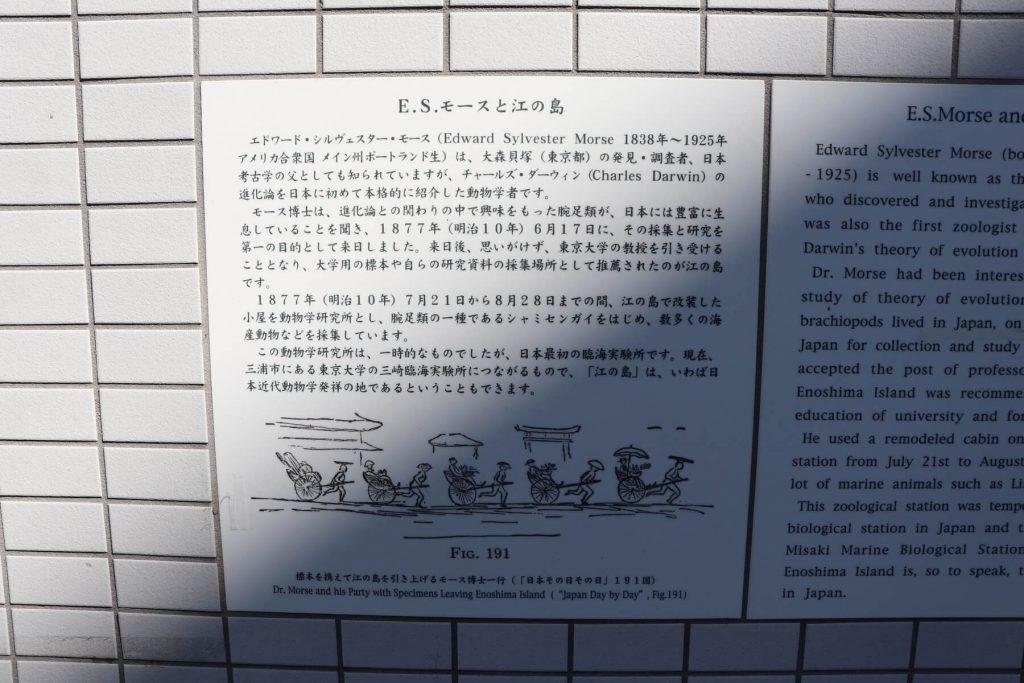 江ノ島とモースの歴史