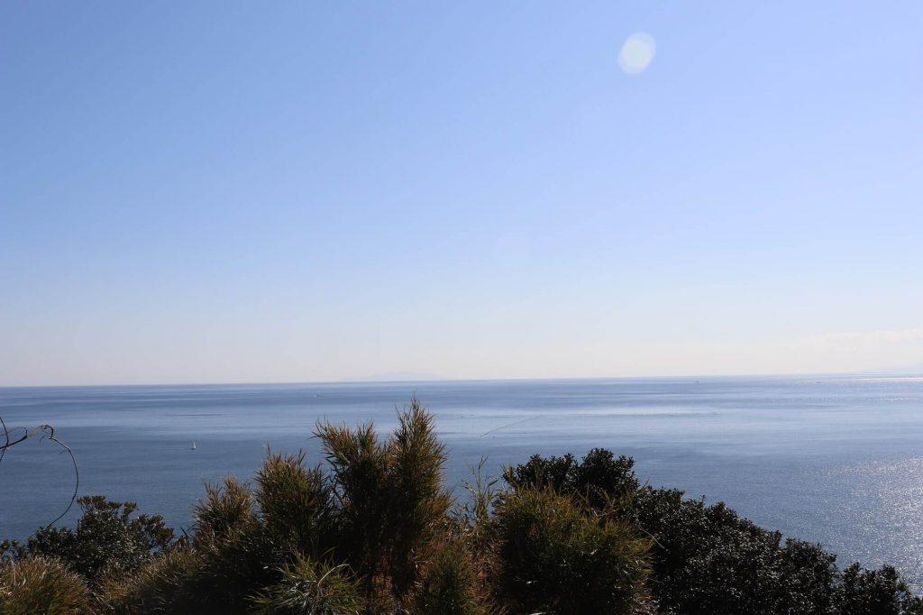 亀ヶ丘公園から伊豆大島