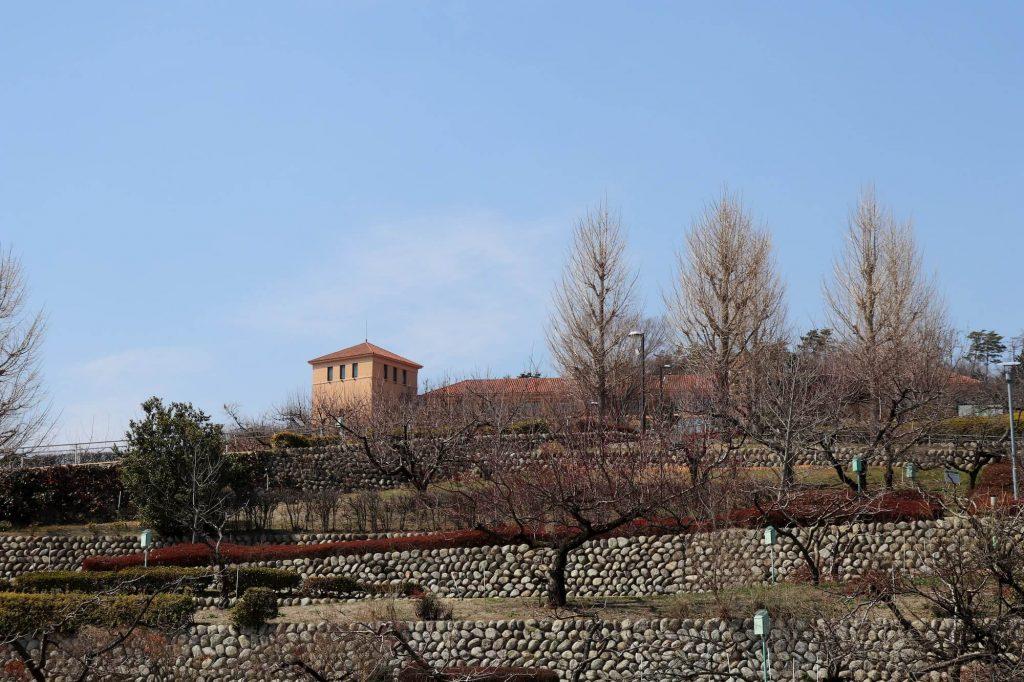 笛吹川フルーツ公園から見える富士屋ホテル