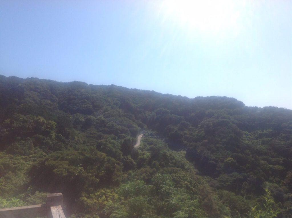 井田煌めきの丘から戸田方面