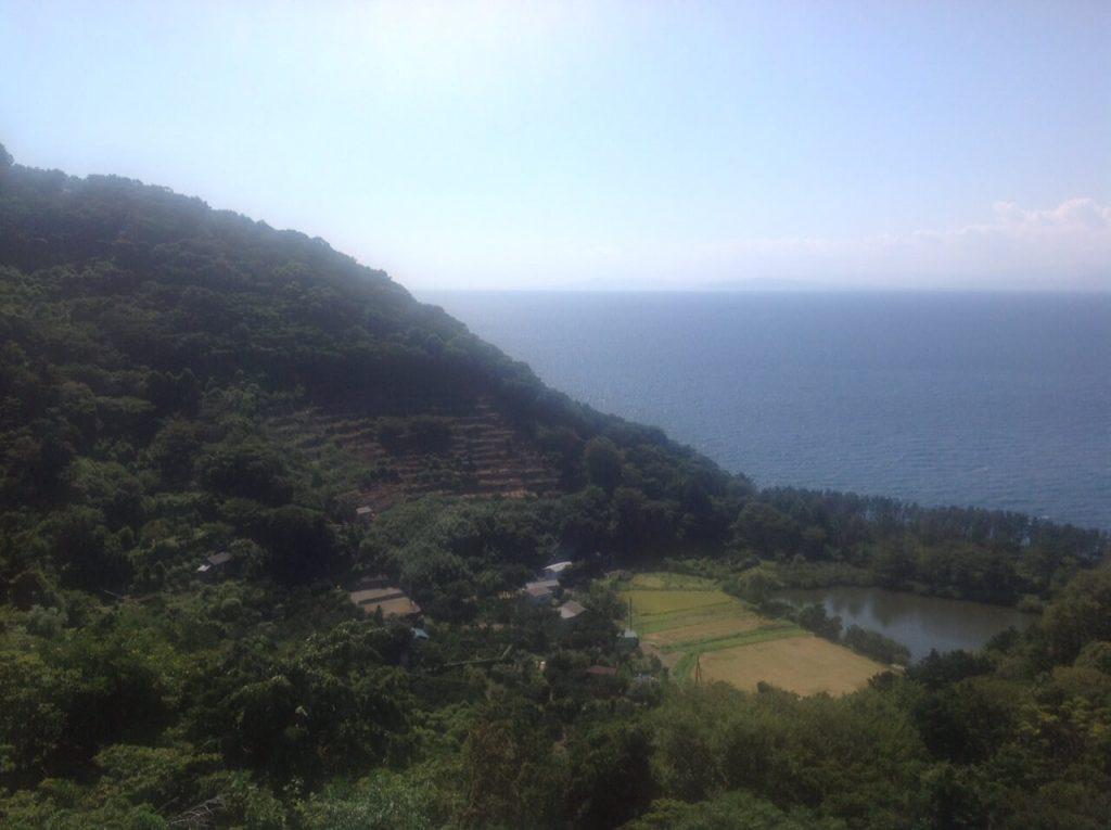 井田の明神池