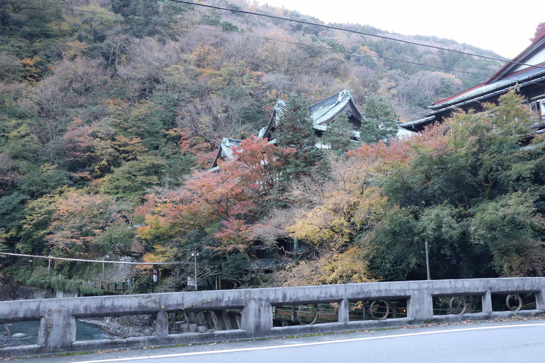 箱根塔ノ沢温泉の高級旅館:元湯還翠楼