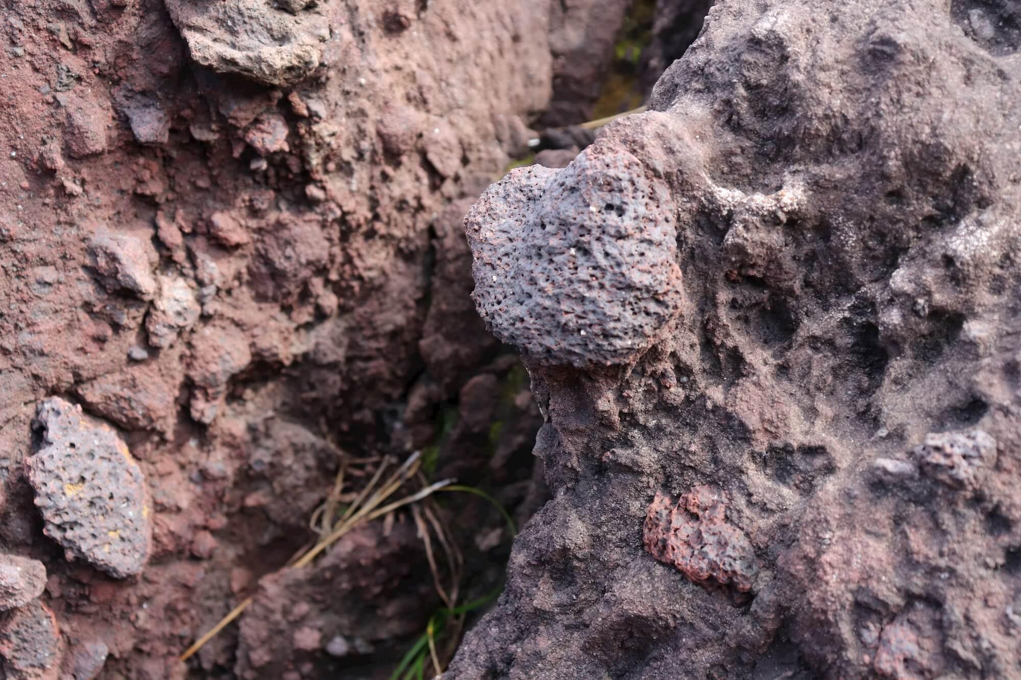 城ヶ崎海岸の岩石