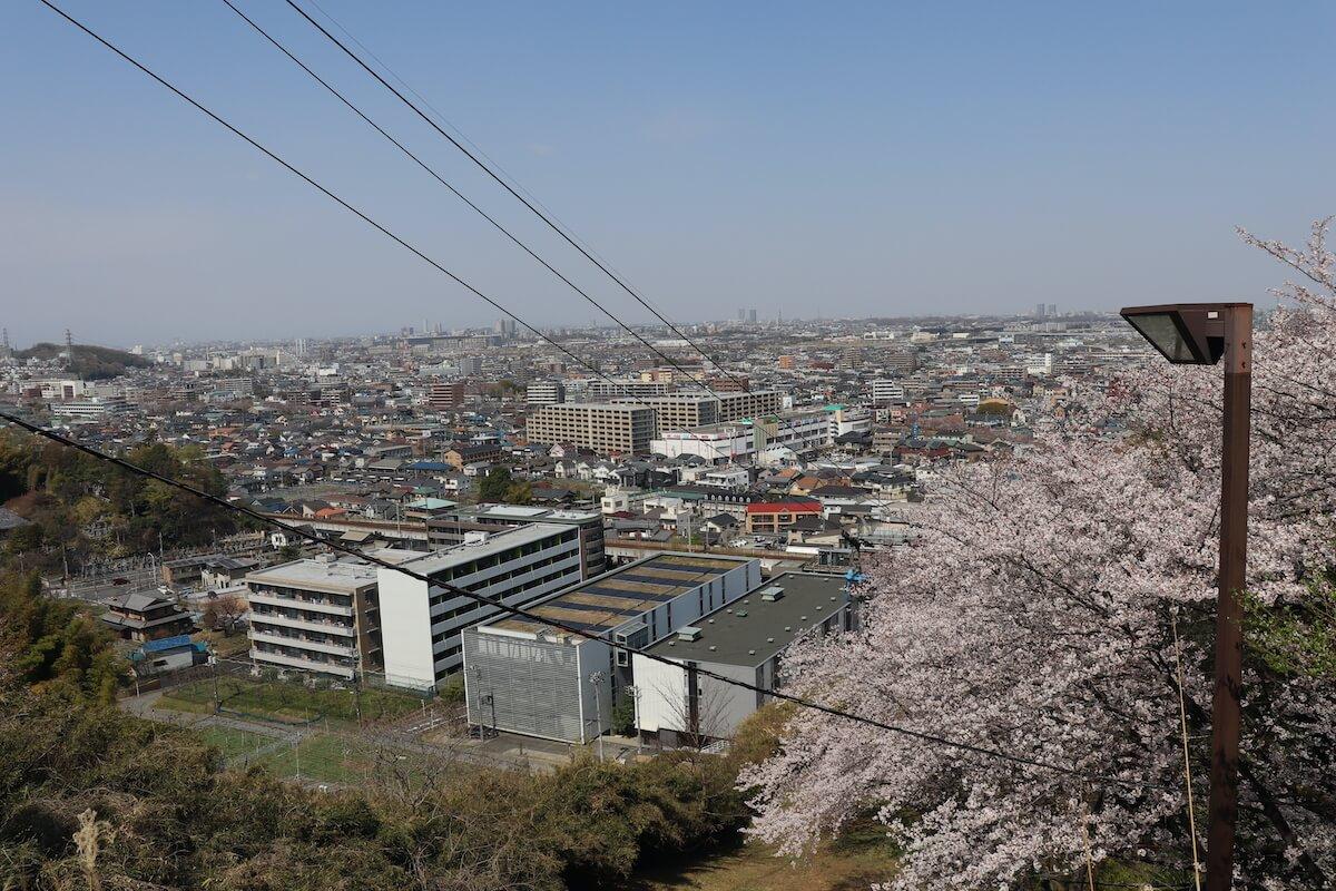 よみうりランドの桜とゴンドラ