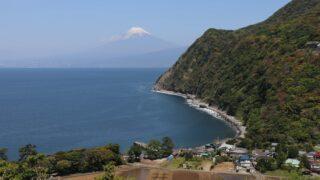 井田の煌めきの丘と富士山